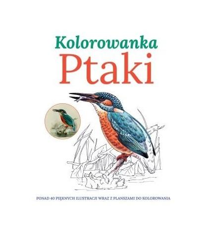 PTAKI kolorowankaPonad 40 pięknych ilustracji wraz z planszami do kolorowania - opracowanie zbiorowe (oprawa miękka)