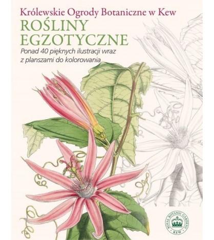 Królewskie Ogrody Botaniczne w Kew Rośliny egzotyczne Ponad 40 pięknych ilustracji wraz z planszami do kolorowania - opracowanie zbiorowe (oprawa miękka)