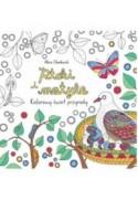 PTAKI I MOTYLE. Kolorowy świat przyrody - Alice Chadwick (oprawa miękka)